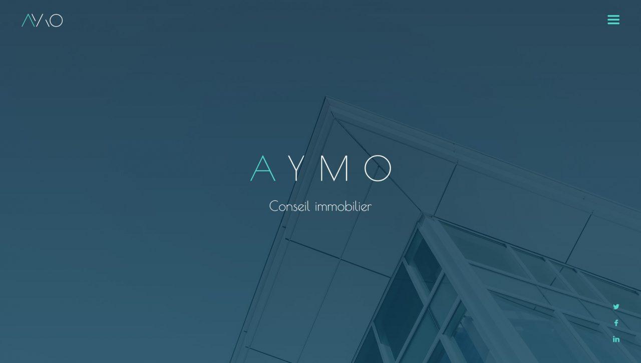 aaymo-header-bweb